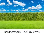 hedge with sky and grass | Shutterstock . vector #671079298