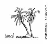 palm trees hand drawn outline... | Shutterstock .eps vector #671099974