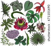 vector collection of hand drawn ... | Shutterstock .eps vector #671101690