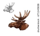 moose elk head sketch vector... | Shutterstock .eps vector #671145838