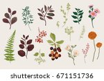 leaves  flowers and berries set.... | Shutterstock .eps vector #671151736