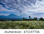 rwanda  volcanoes national park ...   Shutterstock . vector #671157736