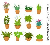Indoor and outdoor landscape garden potted plants isolated on white. Vector set green plant in pot, illustration of flowerpot bloom