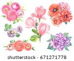 watercolor flower set ... | Shutterstock . vector #671271778