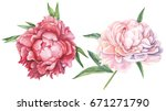peonies flowers. watercolor.... | Shutterstock . vector #671271790
