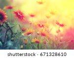 vintage flower background at... | Shutterstock . vector #671328610