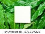 creative layout made of green... | Shutterstock . vector #671329228