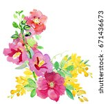 watercolor card with beautiful... | Shutterstock . vector #671436673