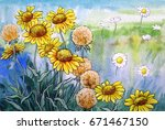 flowers watercolor background ... | Shutterstock . vector #671467150
