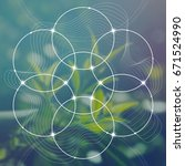 flower of life   the... | Shutterstock .eps vector #671524990