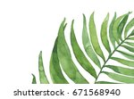 watercolor palm leaf background.... | Shutterstock . vector #671568940