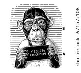 monkeys in a t shirt holding a... | Shutterstock .eps vector #671575108