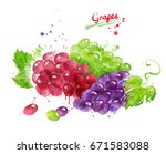 watercolor illustration of... | Shutterstock . vector #671583088