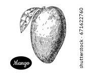 fresh mango . hand drawn sketch ... | Shutterstock .eps vector #671622760