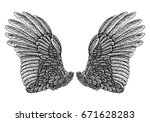 wings pair set. hand drawn... | Shutterstock . vector #671628283