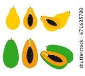 papaya fruit illustration...   Shutterstock .eps vector #671635780
