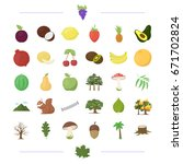ecology  vitamins  fruit and... | Shutterstock .eps vector #671702824