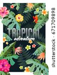 bright tropical design with... | Shutterstock .eps vector #671709898