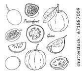 set of vector tropical fruits ... | Shutterstock .eps vector #671887009