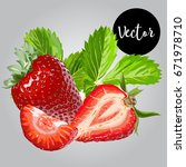 vector strawberry illustration   Shutterstock .eps vector #671978710