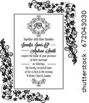 elegant floral swirls  lacy... | Shutterstock .eps vector #672043030