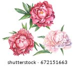 red and pink peonies set of... | Shutterstock . vector #672151663