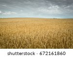 wheat field under the cloudy... | Shutterstock . vector #672161860