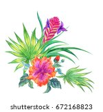 tropical bouquet with hibiscus  ... | Shutterstock . vector #672168823
