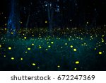 Stock photo firefly flying in the forest fireflies in the bush at night in bangkok prachinburi thailand 672247369