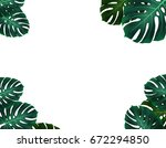 tropical palm leaves.... | Shutterstock . vector #672294850
