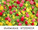 colorful celosia flowers | Shutterstock . vector #672324214