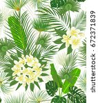 seamless hand drawn tropical... | Shutterstock .eps vector #672371839