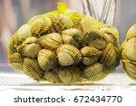cockles in saltwater for sale   ... | Shutterstock . vector #672434770