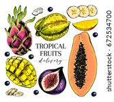 vector hand drawn exotic fruits.... | Shutterstock .eps vector #672534700