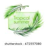 "vector frame ""tropical summer""... | Shutterstock .eps vector #672557080"