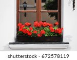 Window Sill With A Red Bloomin...