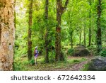 Small photo of Young Adventuress or traveler woman standing in forest. The tropical jungle in Southeast Asia.