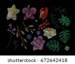 big set. tropical flowers and... | Shutterstock .eps vector #672642418