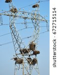 nests of storks on the mast of... | Shutterstock . vector #672715114