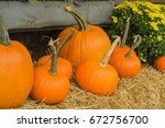Harvest Decorations For The...
