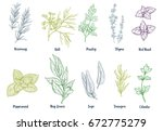 set of colored hand drawn... | Shutterstock .eps vector #672775279