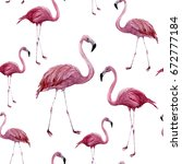 watercolor flamingo seamless... | Shutterstock . vector #672777184