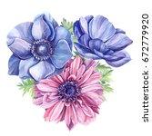 bouquet of anemones watercolor. | Shutterstock . vector #672779920