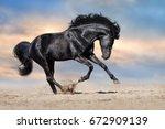 Black Stallion With Long Mane...