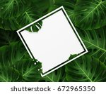 tropical palm leaves.... | Shutterstock . vector #672965350