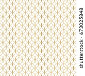 pattern vector line graphic... | Shutterstock .eps vector #673025848