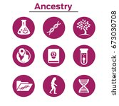 ancestry or genealogy icon set... | Shutterstock .eps vector #673030708