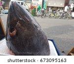 tuna fish   raw head of tuna... | Shutterstock . vector #673095163