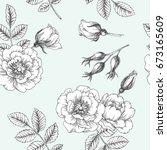 vintage botanical seamless... | Shutterstock .eps vector #673165609