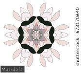 floral symmetrical geometrical... | Shutterstock .eps vector #673170640